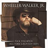 Fuck You Bitch: All-Time Greatest Hits [Explicit]