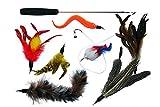 Santa Cruz Club Katzenspielzeug Set Premium mit Maus, Katzenangel mit Natur-Federn, Angel extra lang & Interaktiv = Katze Teleskop stabil, sicher und 97 cm lang Gratis eBook Katzenratgeber
