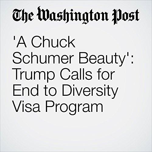'A Chuck Schumer Beauty': Trump Calls for End to Diversity Visa Program copertina