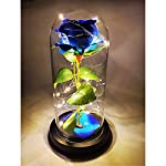 eternal rose flower lamp enchanted rose led strip decro night light beauty and the beast rose gift for women girls valentines day/wedding anniversary/mother`s day/birthday [blue]