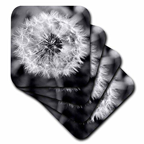 3dRose CST_51762_1 Schwarze und weiße Pusteblume Puff weiche Untersetzer, 4er-Set