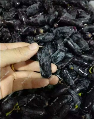 Pépins de raisin Gold Finger vigne vivaces herbes plantes succulentes, Juicy Fruit non-OGM légumes semences fournitures de jardinage 50 Pcs 6