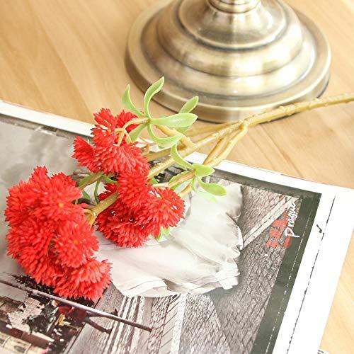 Künstliche Blume 5 Stück/Los Hohe Simulation 6 Köpfe Sukkulenten Blumenkohl Weichgummi Feiner Obstpflanzenstrauß Für Die Heimdekoration Kunstpflanzen Rot