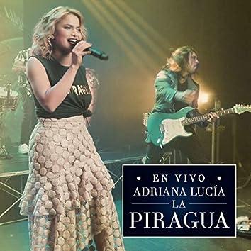 La Piragua (En Vivo)