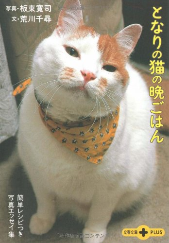 簡単レシピつき写真エッセイ集 となりの猫の晩ごはん (文春文庫PLUS)
