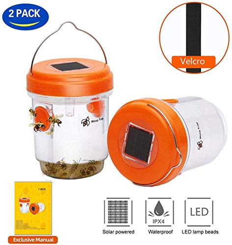 Wasp Trap,Fly Trap