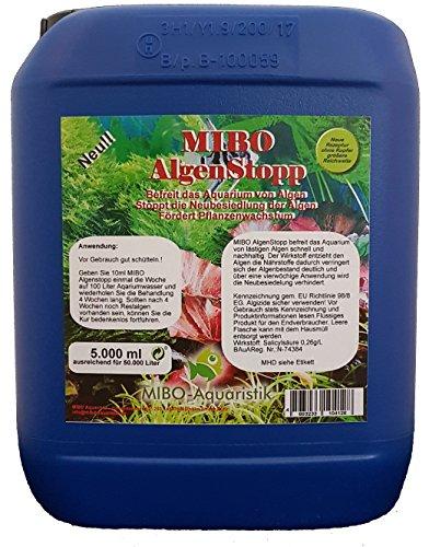MIBO Algenstopp Algenvernichter 5000 ml Kanister ausreichend für 50.000 L Wasser! Jetzt NEU! Neue Rezeptur ohne Kupfer größere Reichweite!!Jetzt Versandkostenfreie Lieferung!