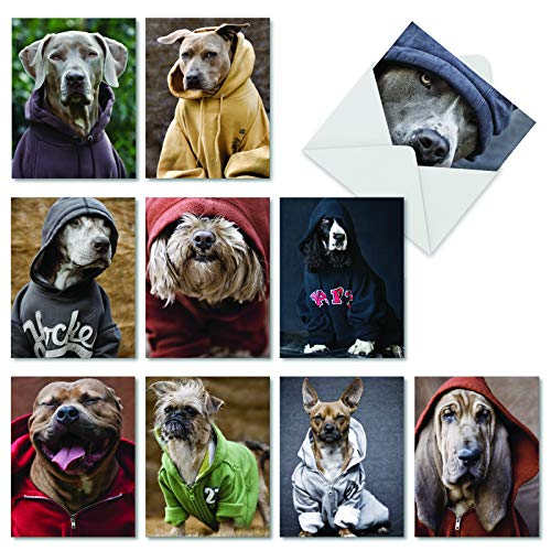 The Best Card Company - 10 Blank Dog Greeting Cards for All Occasions (4 x 5.12 Inch) - Dogs In Da Hood M3733OCB-B1x10