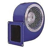 BDRS 140-60 Extracteur d'air de mur pour la ventilation industrielle Ventilateur industriel Ventilateurs Centrifuges Radial Radiales Centrifuge fan fans Ventilateur