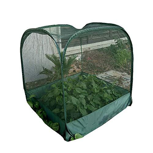 HWLL Planta de Invernadero Pequeño - Cubierta de Invernadero de Plantas, Cubierta de Planta de Jardinería Portátil para Jardín Al Aire Libre Patio Trasero