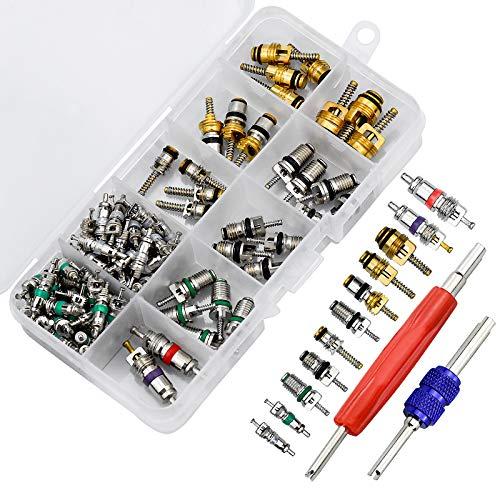 Inntek 102 Stück Auto A/C Ventilkern Klimaanlage Ventileinsatz Zubehör R134a / R12 Ventilschaft Sortiment mit Entferner Werkzeug