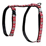 RC Pet Products 1/2-Inch Kitty Harness, Small, Pirate Cat