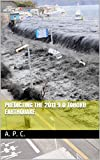 Predicting the 2011 9.0 Tohoku Earthquake (English Edition)