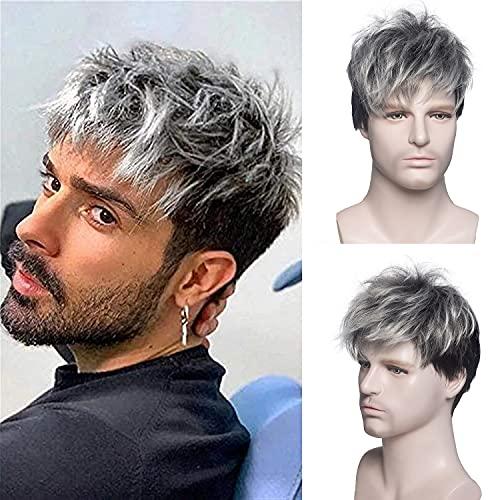 MEIRIYFA Pelucas de plata para hombre peluca corta Synthietic completa peluca para uso diario fiesta masculina Pelucas 6 pulgadas