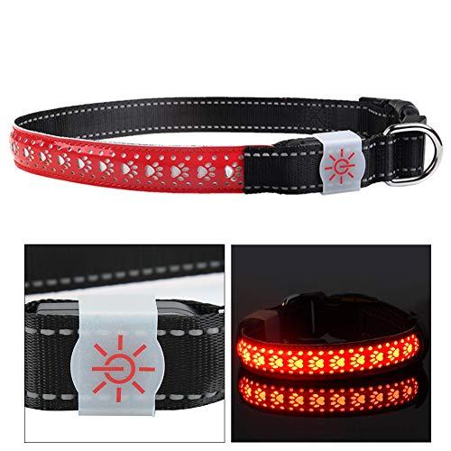 Caiqinlen Collar del Animal doméstico, Collar Recargable del Gato LED del Collar de la Carga por USB, para el Gato del Perro(Red, L Code)