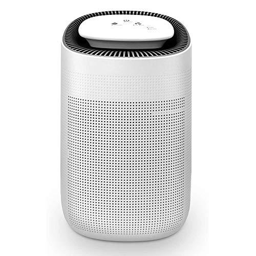 1000ml Aire Deshumidificadores w Función de purificación de aire /, El verdadero filtro HEPA, Apagado automático, control táctil ajustable velocidad de aire, ultra silencioso Alergias Eliminator, Idea