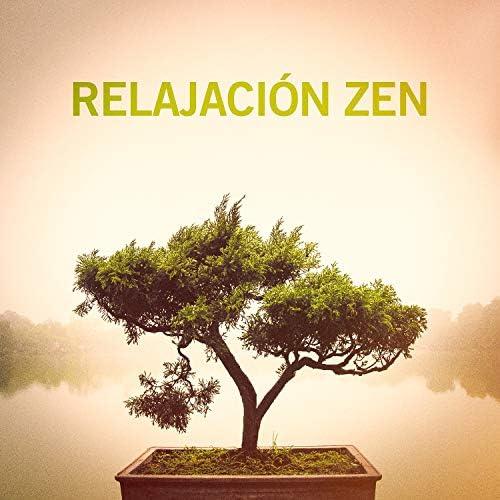 Soothing Music for Sleep Academy & Meister der Entspannung und Meditation