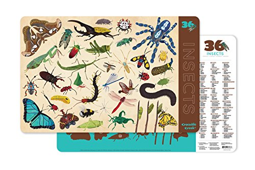 Crocodile Creek-36 Animals/Insects Set de Table, 2843-6, Teal/Tan/Brown/Blue/Green/Red