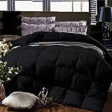 Cheeerrrs Black Down Alternative Comforter Lightweight Bedding Comforters All Season-Duvet Insert Comforter with Coner Tabs-Queen(88x92 inches)