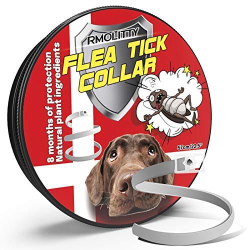 Rmolitty Collare Antipulci Cane, Collare Antiparassitario, 8 Mesi di Protezione per Piccolo Medio Grande Cani (grigio)