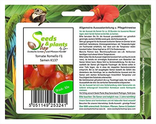 Stk - 10x Tomate Romello F1 Alte Sorte Samen Tomate Gemüse Saatgut K137 - Seeds Plants Shop Samenbank Pfullingen Patrik Ipsa