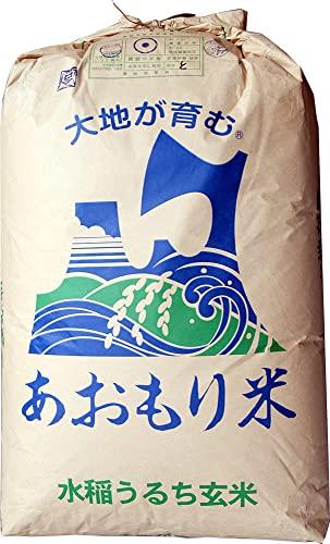 【新米】玄米 10kg 青森 青天の霹靂(へきれき) (7分づき米に)
