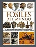 Guia de los fosiles del mundo: 20 (GUIAS DEL NATURALISTA)