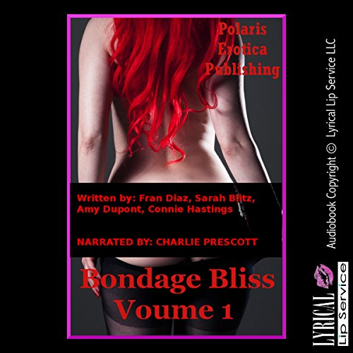 Bondage Bliss, Volume 1 cover art
