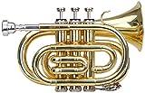 Classic Cantabile Brass TT-400B trompeta de bolsillo latón