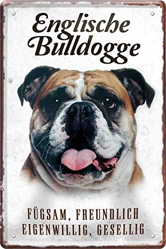 N / A Englische Bulldogge Hund Steckbrief 20 x 30 cm Deko Spruch Blechschild Blech 123