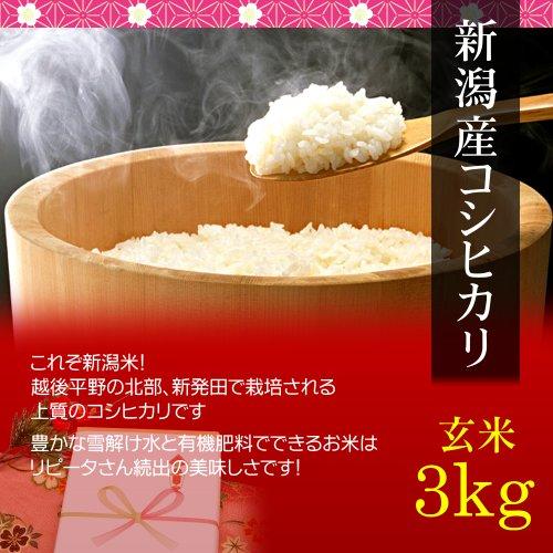 【お歳暮・冬ギフト】新潟コシヒカリ 3kg 玄米・贈答箱入り/ギフト・贈答においしいお米を