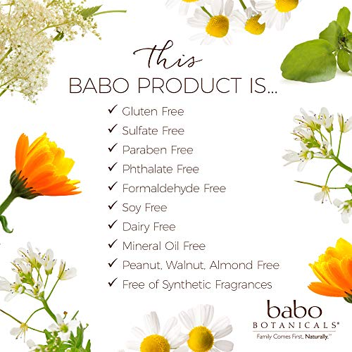 Image of Babo Botanicals Purifying Swim & Sport 2-in-1 Shampoo & Wash with Natural Cucumber and Aloe Vera, Vegan, for Babies, Kids or Sensitive Skin - 16 oz.
