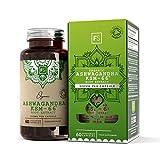 Ashwagandha KSM-66 Orgánico - 60 capsulas de Focus Supplements   EXTRACTO DE ASHWAGANDHA ALTA POTENCIA   Soporte inmunológico y reductor del estrés   Fabricado en el R.U