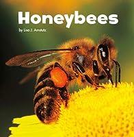 Honeybees (Little Critters)