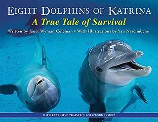 dolphin 8