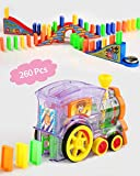 Wellin 260 pcs Blocks Domino Train Toy with Bridge Set Mega Pack Domino Game for 3-12 Years Old Boys Building Blocks Stacking Tile Games (260 pcs Domino Train with Bridge Set)