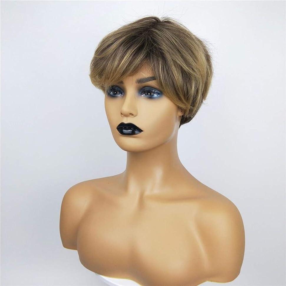 モットー記念小道Summerys 女性のための短い巻き毛のかつら高温シルクケミカルファイバーウィッグヘッドギア