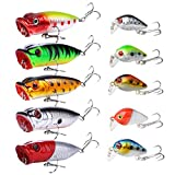 Best Smallmouth Bass Lures - 10PCS Topwater Fishing Lures Bass,SundayPro Poppers Fishing Lure Review