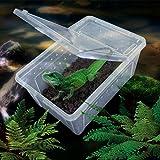 Wasserreptil Transportbox Fütterung Brutbox für Terrarium - 7