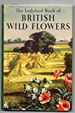 The Ladybird Book of British Wild Flowers