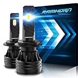 RAMHORN H7 LED Bulbs,360 Degree Adjustable Beam 10000Lm 6500K Cool White Conversion Kit of 2.