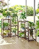Tiered Plant Stand Rack 6 Tier 11 Potted Indoor Plants Stands for Living Room Corner Balcony and Bedroom