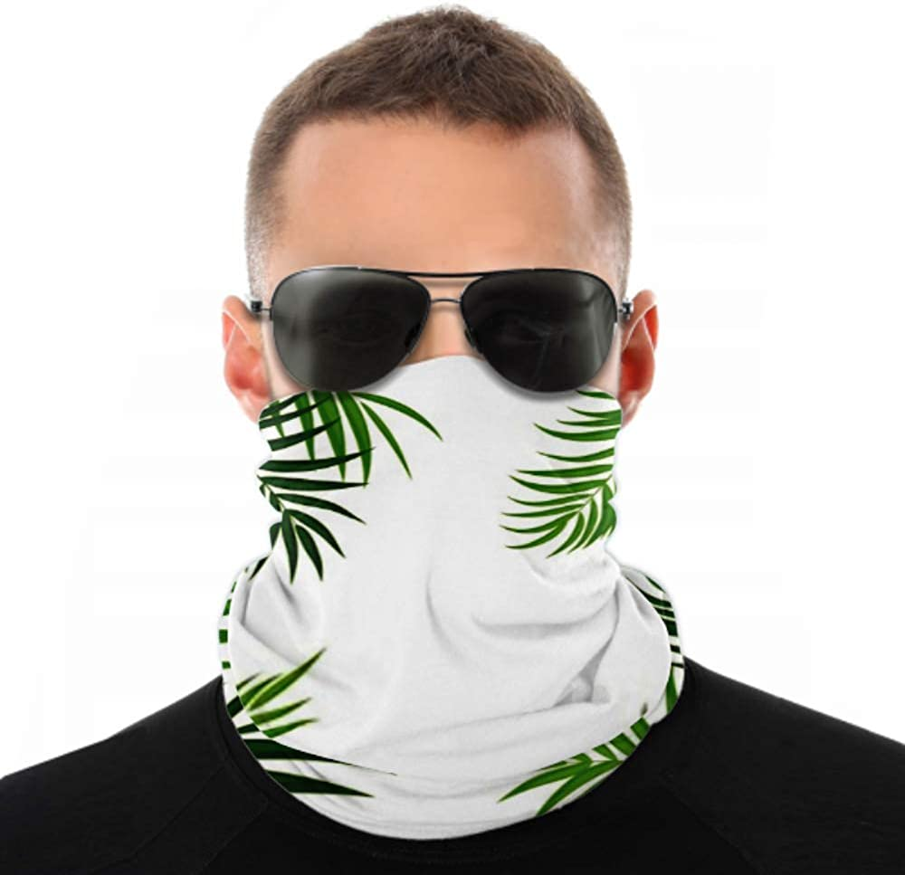 Headbands For Men Women Neck Gaiter, Face Mask, Headband, Scarf Beautifil Palm Tree Leaf Silhouette Background Turban Multi Scarf Double Sided Print Sport Headband For Sport Outdoor
