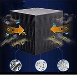 FENG Filtro para acuario, filtro de agua ecológico, cubo de 10 x 10 x 10 cm, ultrafuerte, filtración y absorción de estanque y medios de filtrado para acuario, filtro interno (B)