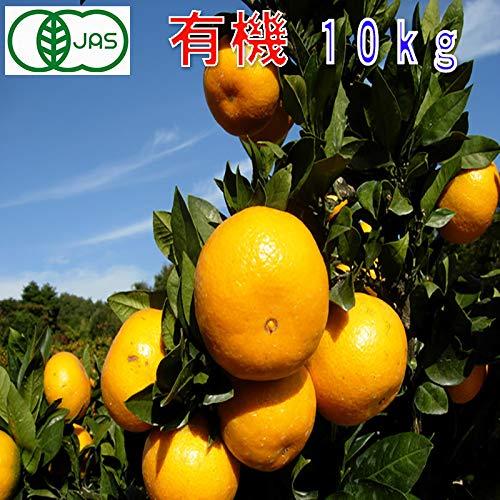 有機JAS みかん 訳あり 約10kg 和歌山産 小玉 2S〜3S ミカン 蜜柑 産地直送 SSS