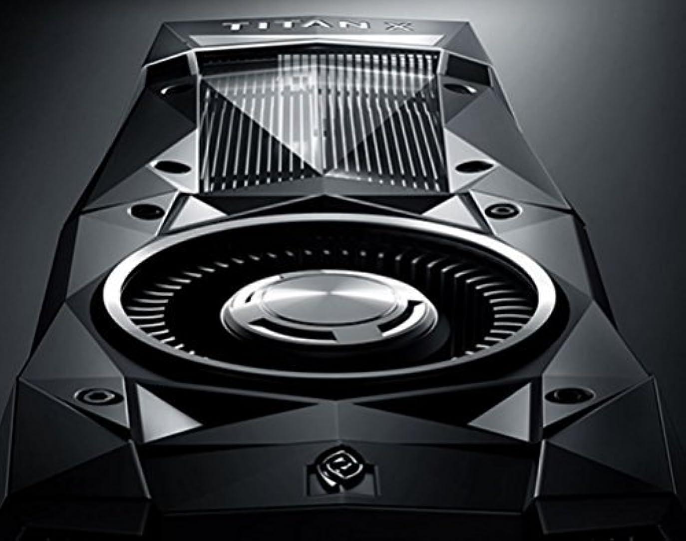 遺跡注ぎます市の花NVIDIA GeForce Titan X Pascal 12GB GDDR5X (900-1G611-2500-000) [並行輸入品]