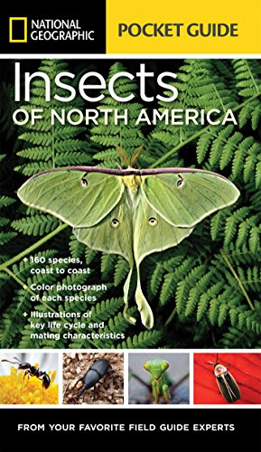 Best insect books