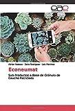 Econeumat: Sub-Productos a Base de Gránulo de Caucho Reciclado