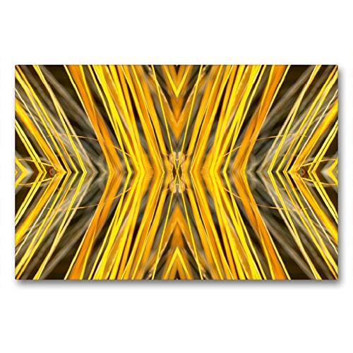 CALVENDO Premium Textil-Leinwand 90 x 60 cm Quer-Format Herbstliche Gold, Leinwanddruck von Brigitte Deus-Neumann