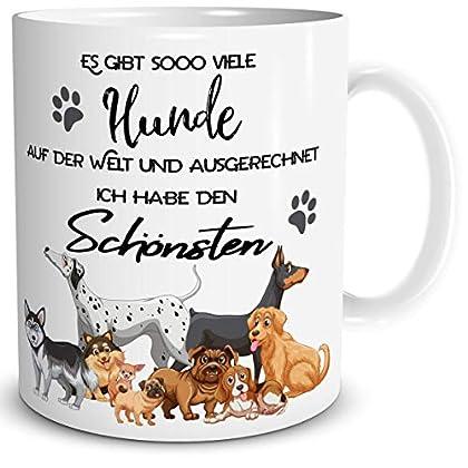 Geschenktasse mit Spaßfaktor - Der Hund ist für dich das liebste Haustier der Welt? Dann zeige es. Die lustige Hundetasse ist perfekt für jeden Hundefreund. Ein tolles Geschenk zum Geburtstag für die beste Freundin, Mutter oder Kollegin. Jede Hundema...